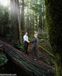 Two men are standing on a giant fallen tree in a deep dark forest and shaking hands.  A dense forest of huge redwood trees form the backdrop for two businessmen shaking hands and standing atop a giant tree laying on the ground.